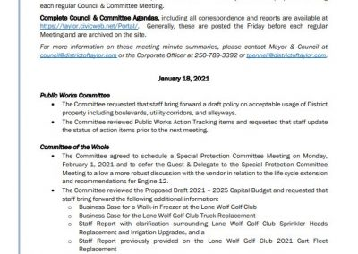 January 18, 2021 Council & Committee Meeting Summary